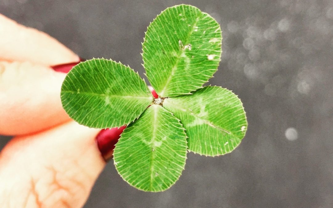 What's Luck Got to Do With It? Luck, Karma, and Interconnectivity